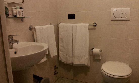 Best Hotel: Particolare del bagno