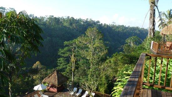 Nandini Bali Jungle Resort & Spa : Uitzicht vanaf het balkon