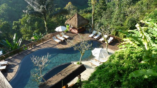 Nandini Jungle Resort & Spa Ubud: Zwembad in de ochtend