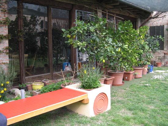 B&B Acero Rosso: Nel giardino