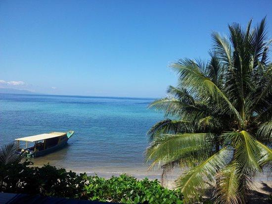 Bunaken Island Resort : View from my room
