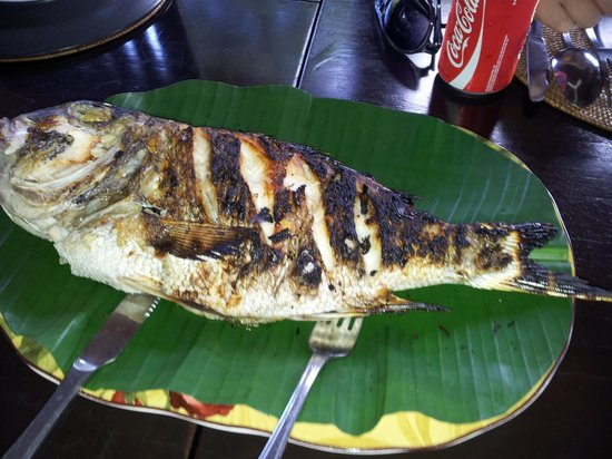 Bunaken Island Resort: Delicious catch o' the day