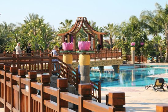 Royal Dragon Hotel: poolbereich