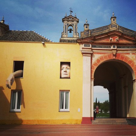 Andalusian Center for Contemporary Art : Um expectador inusitado dos visitantes do centro e monastério!