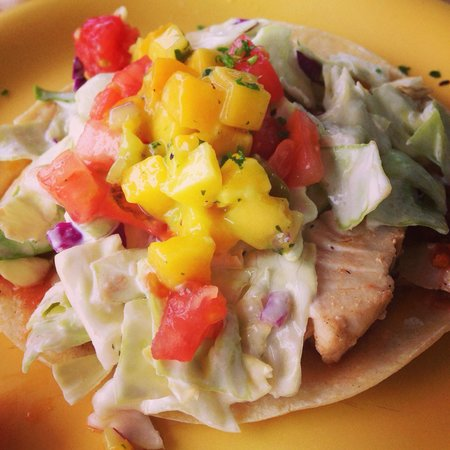 Coconut's Fish Cafe: The Fish Taco's (you get 2 of these... Very filling!!)