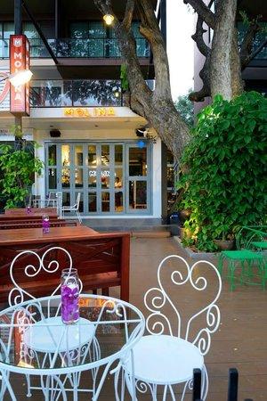 Molina Italian Wine & Cuisine: Molina Terrace
