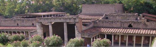 Oplonti Villa di Poppea Ruins: particolare