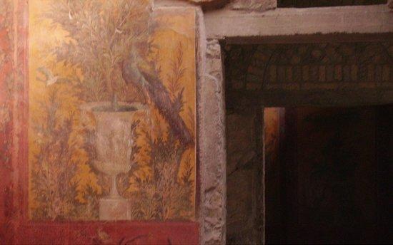 Oplonti Villa di Poppea Ruins: affresco