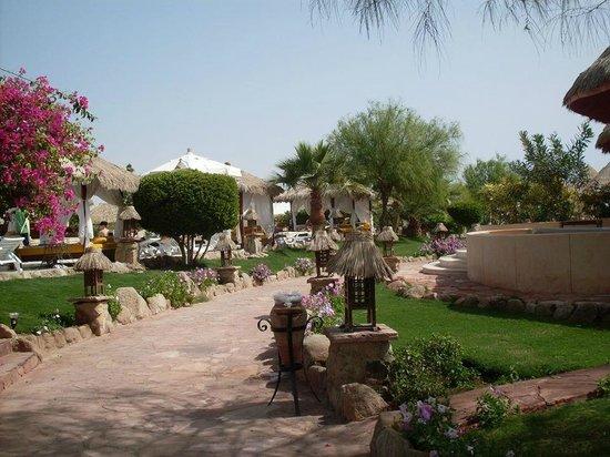 Laguna Vista Beach Resort: Interno del villaggio