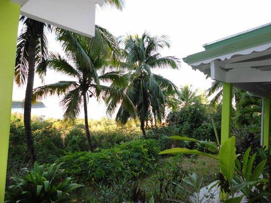 Le Rayon Vert: Vue de notre terrasse