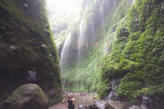 Madakaripura Waterfall : Madakaripura water fall