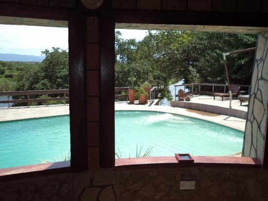 Gwabi River Lodge: View of pool and river from the bar area