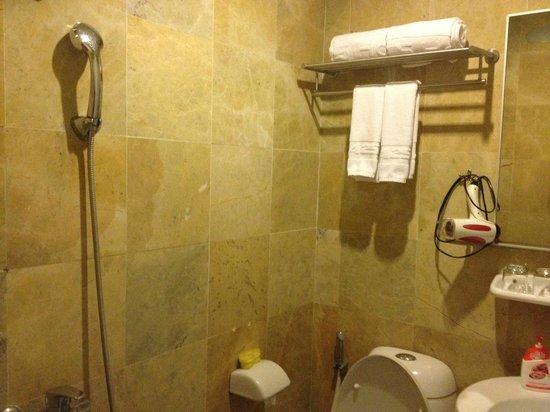 Asean Hotel: シャワーカーテンがない