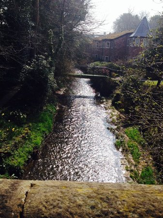 Legh Arms: Nice walk in Prestbury