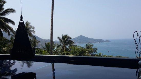 Monkey Flower Villas: View from pool