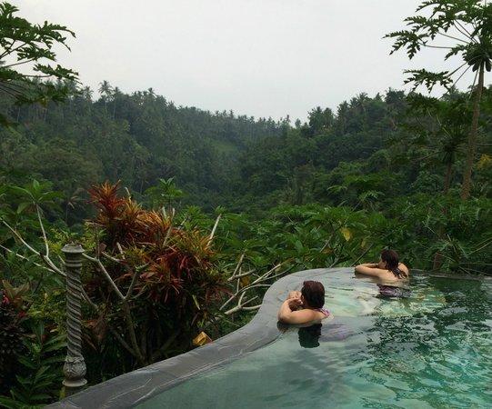 Tirta Asri Ubud : infinity pool overlooking rice terraces
