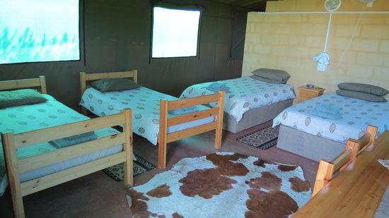 Kudu Ridge Game Ranch : Safari Tent interior