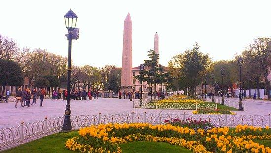 Istanbul Urban Adventures : Tulip Festival in İstanbul