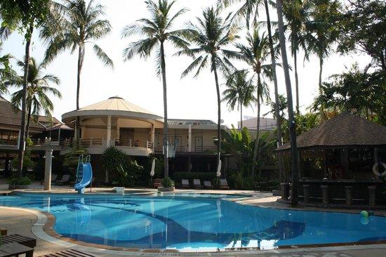 Coconut Village Resort : бассейн