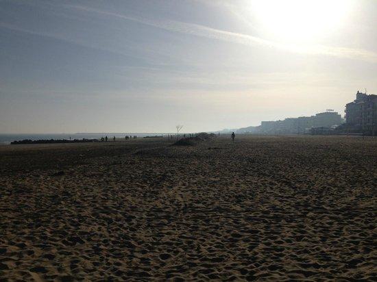 Hotel Venezia: La spiaggia nei pressi dell'hotel