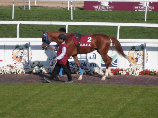 Qatar Racing Club