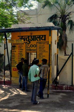 Udaipur Zoo: Zoo