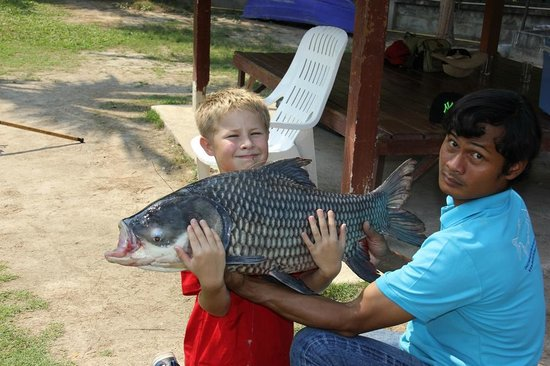 Hua Hin Fishing Lodge : Siamese Carp
