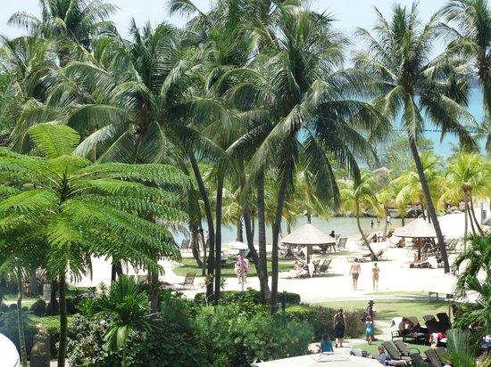Shangri-La's Rasa Sentosa Resort & Spa : private beach with sunbeds tucked in corner
