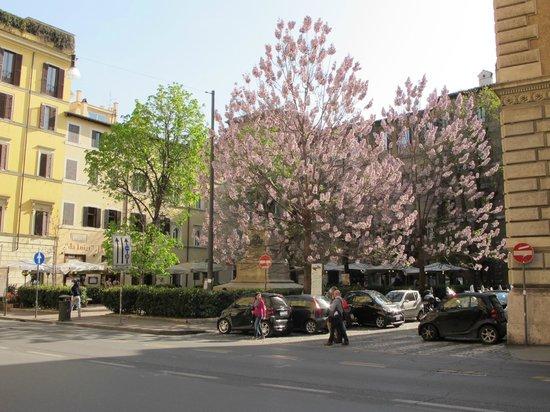 Trattoria Polese: Place vue de la rue