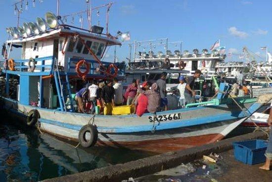 Seafest Hotel: Fishing boat arrival