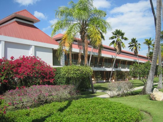 Copamarina Beach Resort & Spa : vue