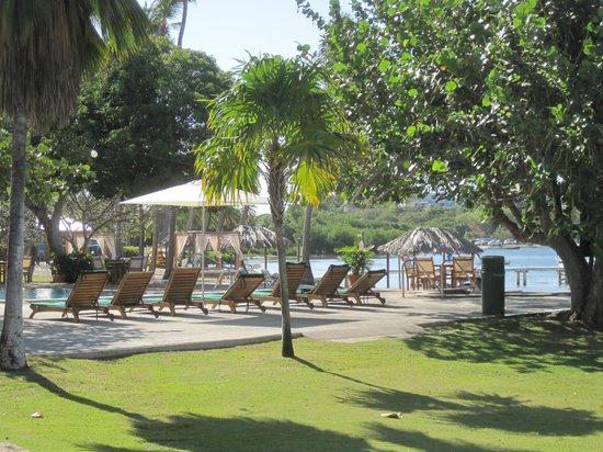 Copamarina Beach Resort & Spa : pool