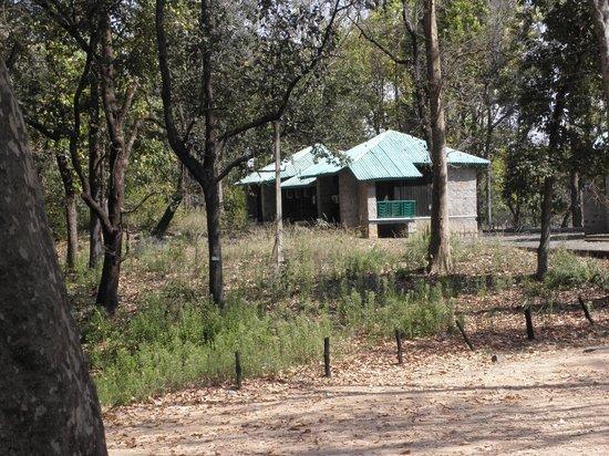 Baghira Log Huts: Rooms 5-8