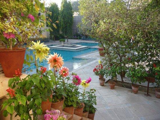 Samode Haveli : Garden and pool