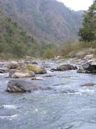 Rishikesh Valley: Ganga tributary nearby (Hyoul River)