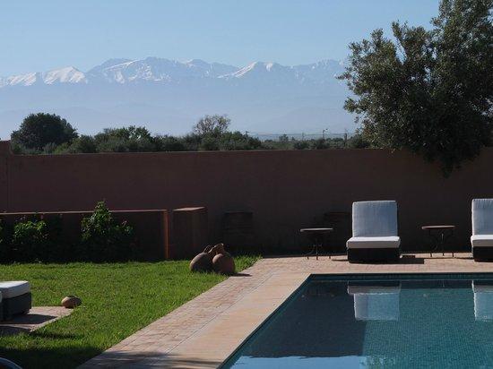 "Villa Al Byda: La piscine de ""petite villa"" avec l'Atlas"