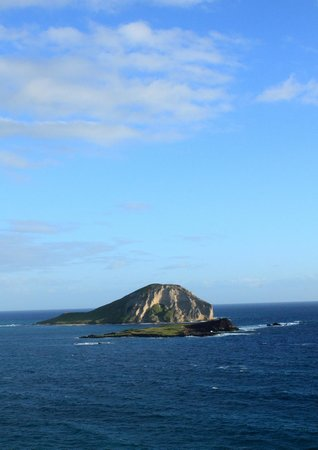 Makapuu Lighthouse Trail: View