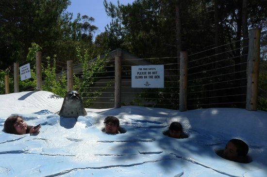 San Diego Zoo: LOL