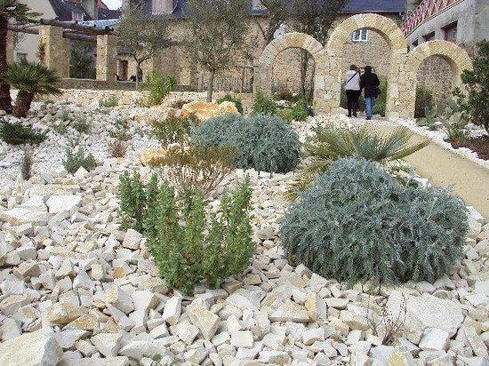 Le Jardin de la Retraite : PLANTES DE TERRE ARIDE