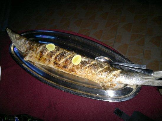 Aquario: pesce alla griglia....bravo Joseph!!!