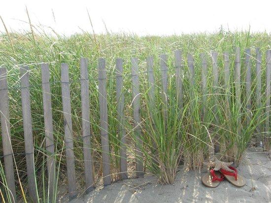 Rehoboth Beach-Dewey Beach Chamber of Commerce: Delaware Beaches: clean and beautiful year round.
