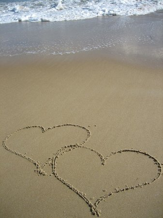 Rehoboth Beach-Dewey Beach Chamber of Commerce: Have your wedding in the Rehoboth Beach/Dewey Beach Delaware areas
