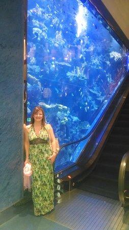 Burj Al Arab Jumeirah: reception area with aquarium