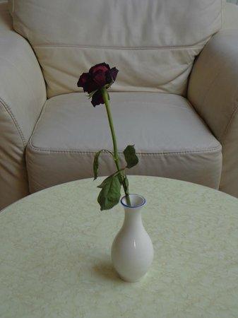 El Mouradi Mahdia : Une rose fanée dans la réception