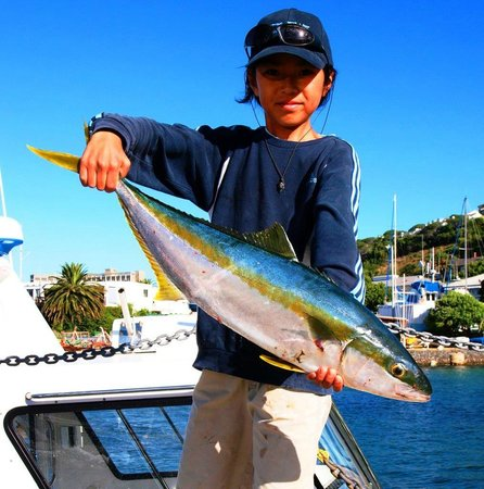 Big blue fishing charters simon 39 s town 2018 ce qu 39 il for Big blue fish