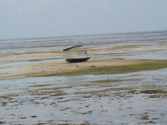 Ora Resort Watamu Bay: effetti della bassa marea