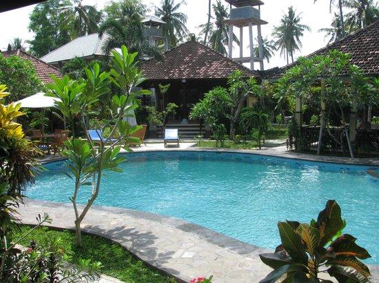Hotel My Lovina: Den varma och underbara poolen