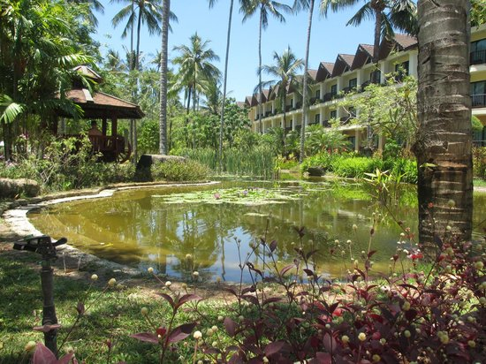 Duangjitt Resort & Spa : Grounds