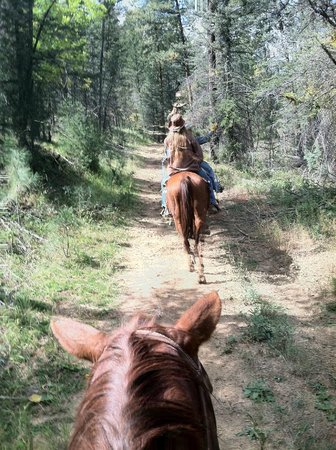 Inn of the Mountain Gods Resort & Casino : Trail Ride