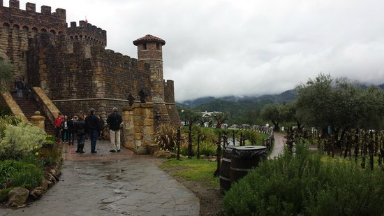 Castello di Amorosa: As we walk up to the castle